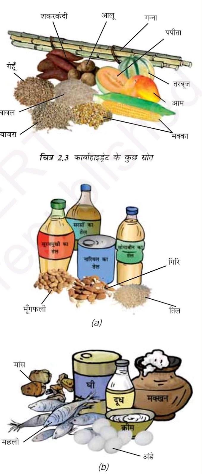 भोजन के घटक कौन कौन से होते हैं ? खनिज पदार्थों की कमी से होने वाले रोग जानिए। [Diseases caused by deficiency of food components and minerals]