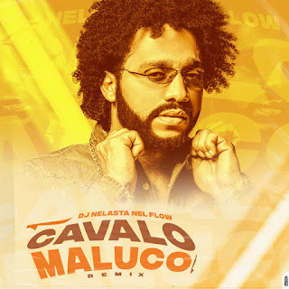 DJ Nelasta Nel Flow - Cavalo Maluco (Remix) [Exclusivo 2021] (Download Mp3)