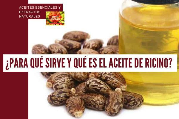El aceite de ricino es un compuesto vegetal que procede del prensado de las semillas de la planta del Ricino