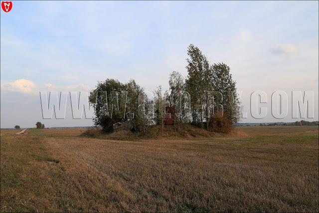 Полукапонир №5. Руины и будка