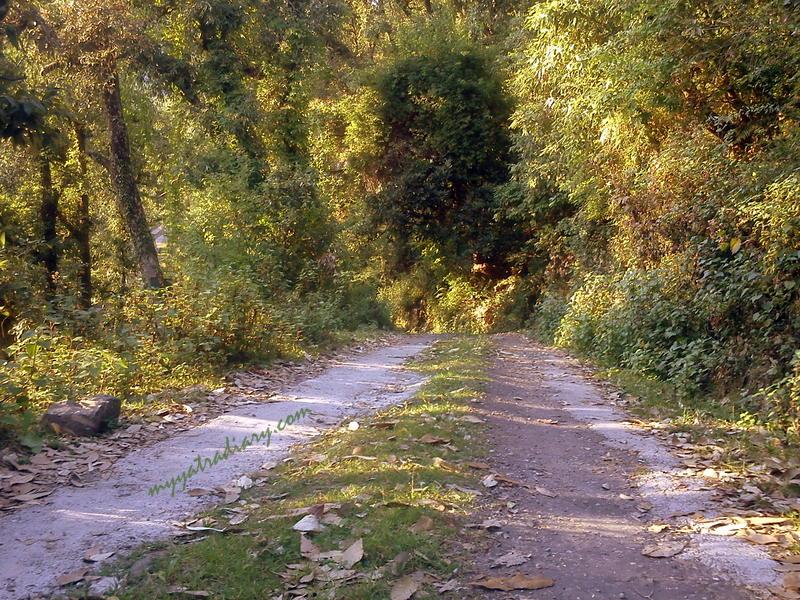 Take a detour Dharamsala