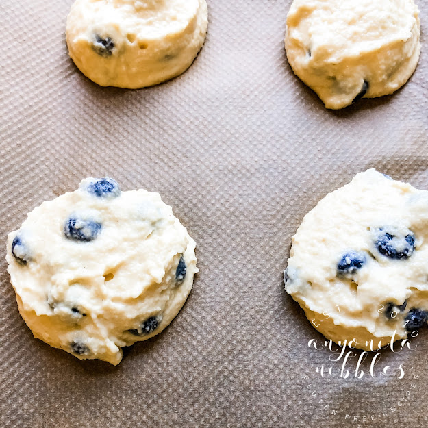 Uncooked gluten-free blueberry biscuits from Anyonita Nibbles Gluten-Free