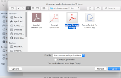 Open the highlighted list with Acrobat Pro.