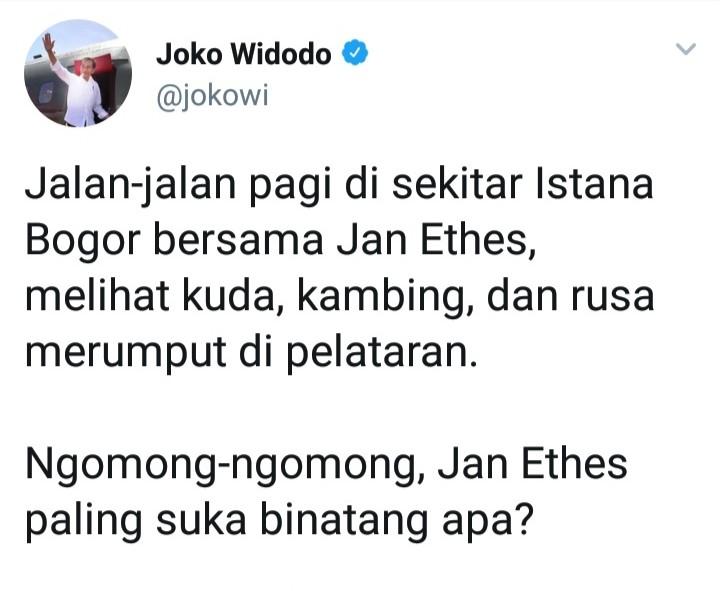 Jokowi Pamer Jalan-Jalan dengan Cucu, Pertanyaan Netizen Mengguncang Jiwa
