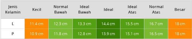 Tabel Ukuran Lingkar Lengan Bayi Usia Tujuh Bulan