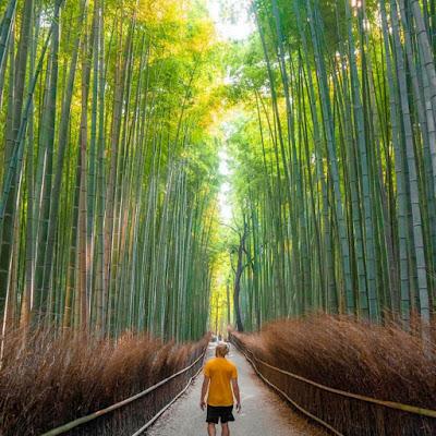 10 Tempat Wisata di Jepang Terpopuler