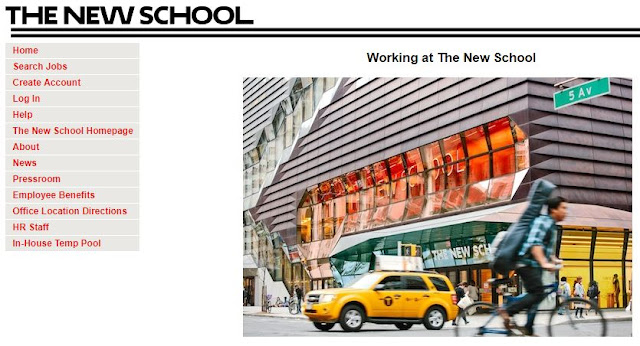 New York Historical Society & The New School Schwartz Postdoctoral Fellows Program - Bivash Vlogs