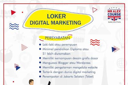 Info Lowongan Kerja Digital Marketing Mr Alex Course Jakarta