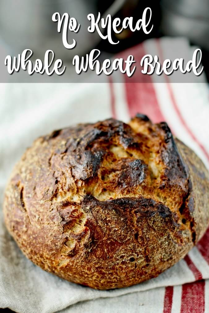 No Knead Whole Wheat Bread whole loaf