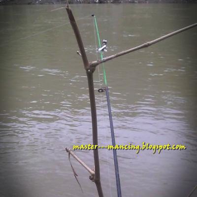 Ikan Wader beles atau Bader
