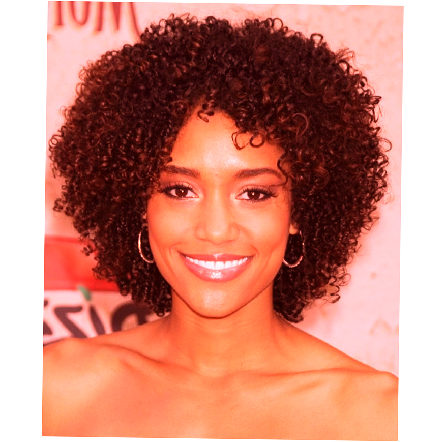 African American Natural Hairstyles For Medium Length Hair Photo