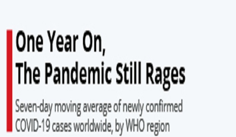 One Year On, The Pandemic Still Rages #infographic