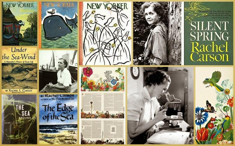 Primavera Silenciosa: Rachel Carson