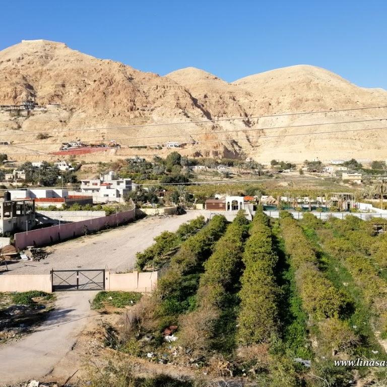 Mengunjungi Mount of Temptation dan Kota Yerikho Palestina