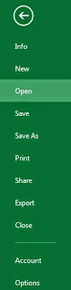 Excel 2013 file word options