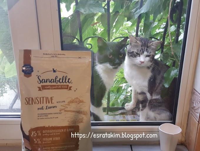 Petimce.com Kedi Maması Alışverişim