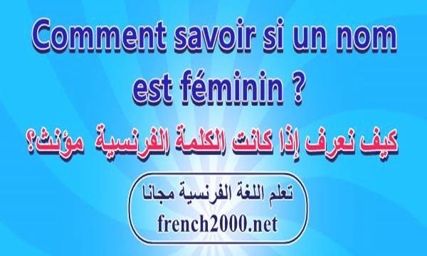 نهايات الكلمات المؤنثة فى اللغة الفرنسية