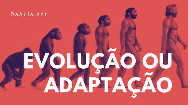 História: Evolução ou adaptação: O homem veio do macaco?