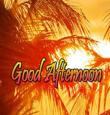 good afternoon images with lunch, good afternoon images with quotes, good afternoon images hindi,good afternoon images hindi,good afternoon images quotes,