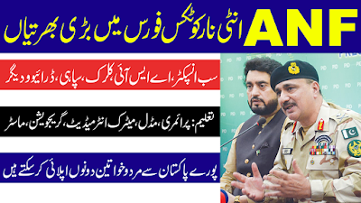 anti narcotics force anf jobs male and female jobs 2020
