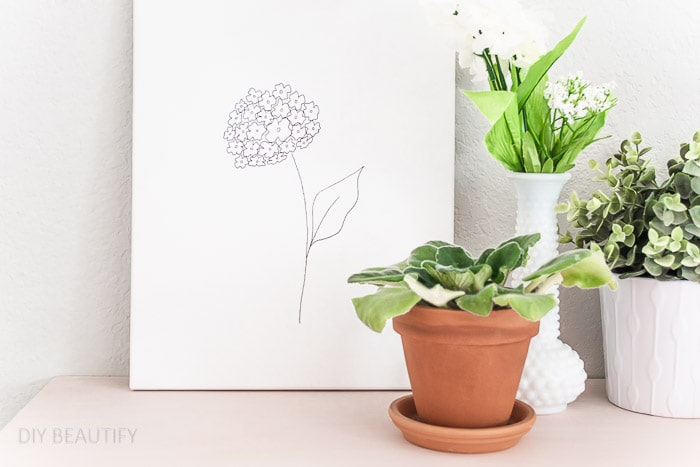 black and white hydrangea sketch on canvas