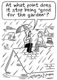 """pencil cartoon of two people on the roof of a house with floodwaters all aroungd; one has an umbrella and is saying"""" At what point does it stop being goof good for the garden?"""" By Royston"""