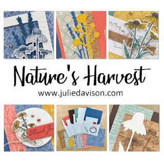Stampin' Up! Nature's Harvest Card Kit ~ Harvest Meadow Suite ~ July-December 2021 Mini Catalog ~ www.juliedavison.com #stampinup