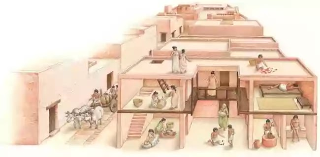 হরপ্পা সভ্যতার সামাজিক জীবন