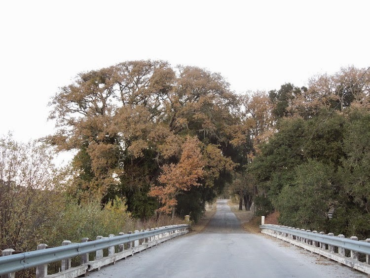 Bridge near Entrance to Jack Creek Road © B. Radisavljevic