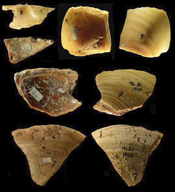 Neanderthals collected clam shells and pumice from coastal waters to use as tools