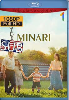Minari: Historia de mi familia (2020) [1080p y 720p BRrip] [SUB] [LaPipiotaHD]