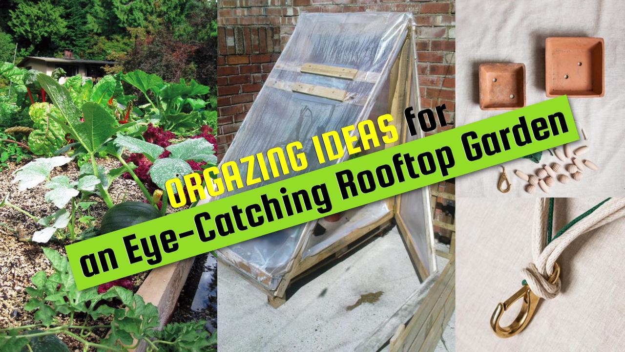 DIY organizing ideas for rooftop garden via simphome.com