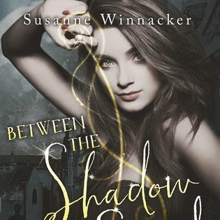 Darkest soul, book 1: Between the Shadow and the Soul de Susanne Winnacker