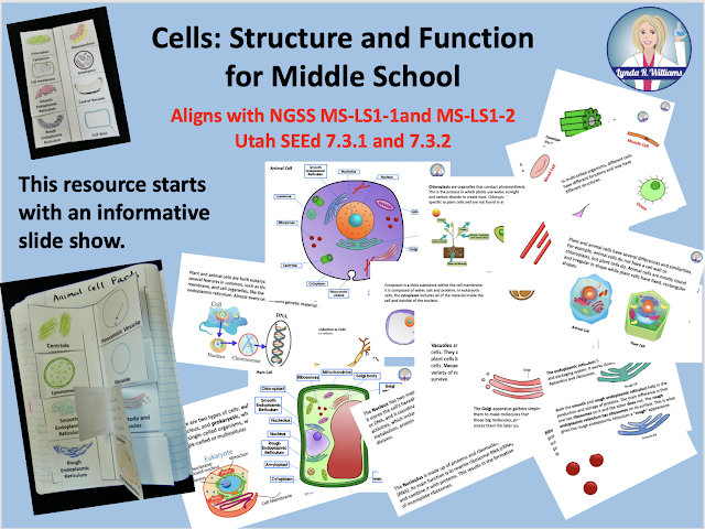 Cells: Structure and Function Middle School