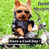 Good Morning Funny Messages With Wishes Images