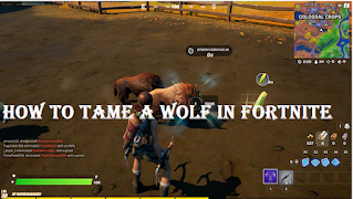 Tame wolf in fortnite, How to tame a wild boar or wolf
