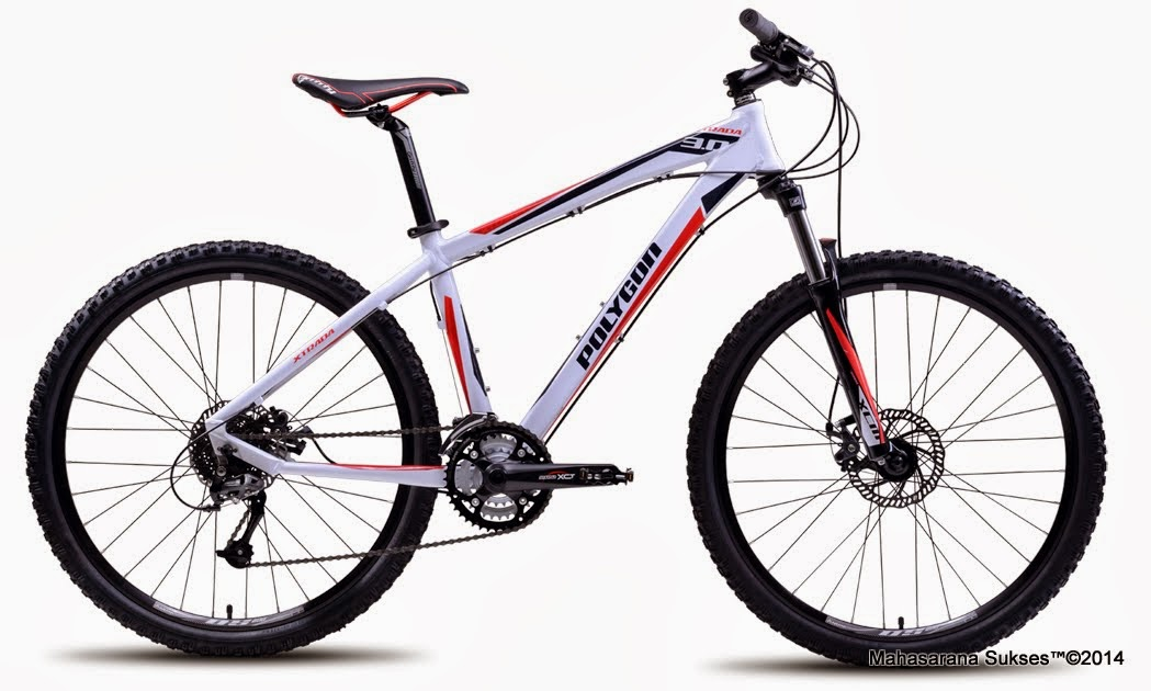 Sepeda Gunung Polygon Xtrada 3.0