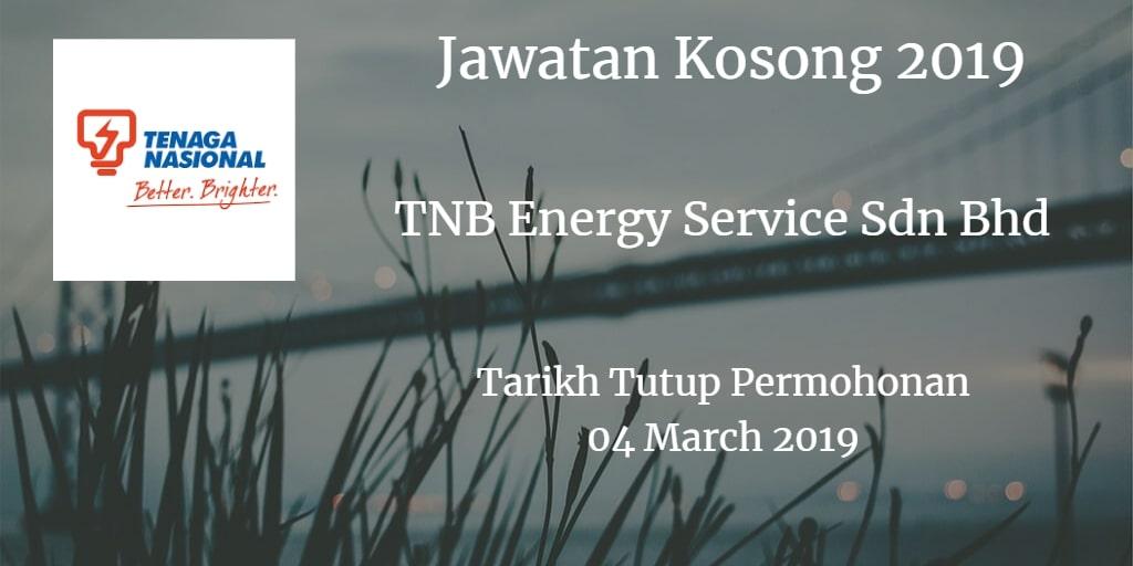 Jawatan Kosong TNB Energy Service Sdn Bhd 04 Mac 2019