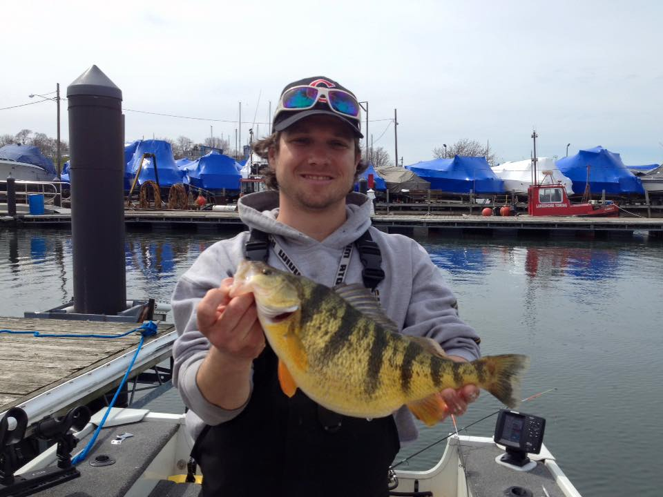 Lake erie perch fishing for Lake michigan perch fishing report