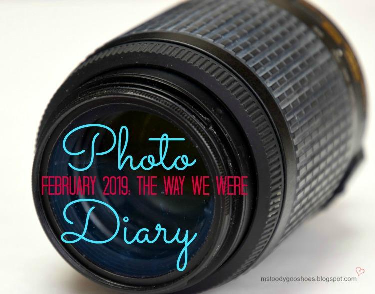 February 2019 Photo Diary | Ms. Toody Goo Shoes