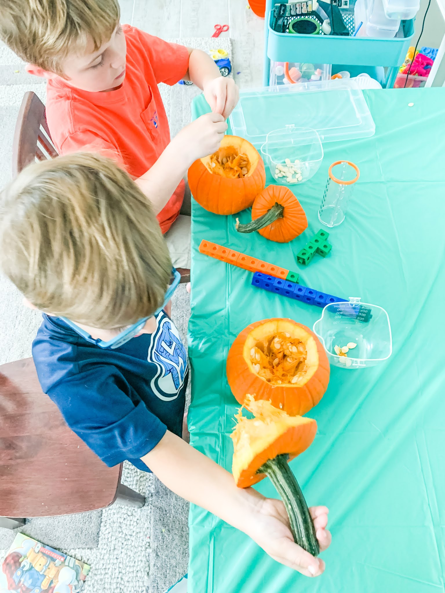 Science experiment for kids, pumpkin investigation taking the seeds out and weighing them.