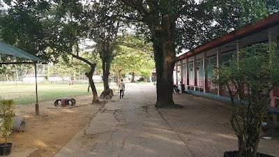 Foto van de lokale school van Ko Muk