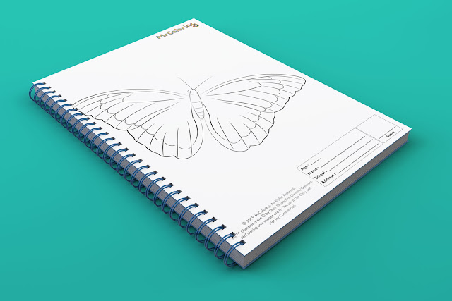 printable butterfly template outline coloriage coloring pages book pdf pictures to print out for kids to color fun teens girls toddler preschool kindergarten adults1