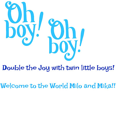 Double the Joy with Twin Boys!