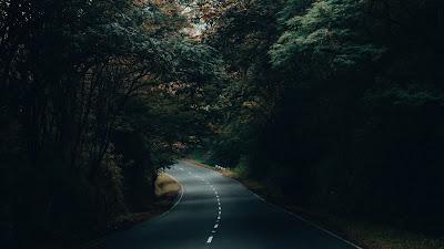 Free Wallpaper Road, Asphalt, Forest, Trees