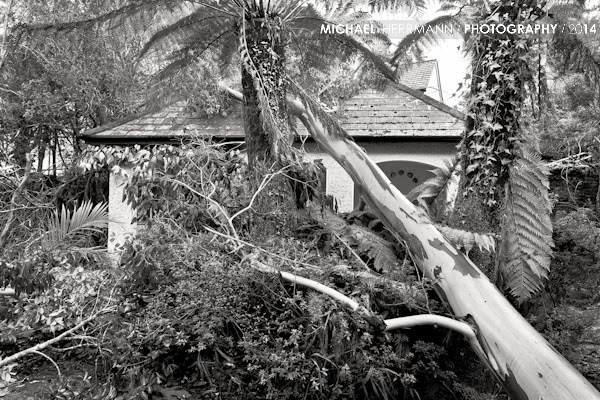 Storm damage Kells Bay Garden