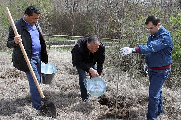 Armenia quiere plantar 10 millones de arboles