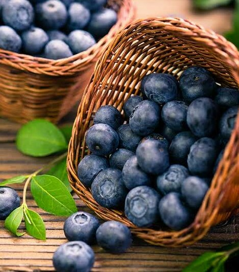 Blueberry In Hindi Blueberry Meaning In Hindi