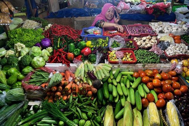 Pasokan Melimpah, Kementan Ingin Tingkatkan Ekspor Sayuran Segar