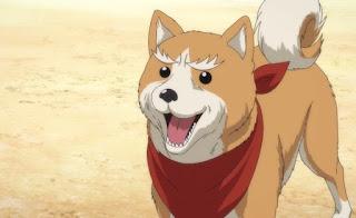 Oda Cinnamon Nobunaga Episodio 05